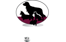 Nazareth Veterinary Center